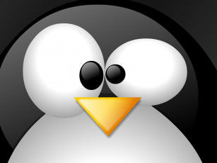 обоя big, penguin, компьютеры, linux