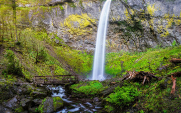 Картинка природа водопады скала upper oneonta waterfalls водопад columbia river gorge