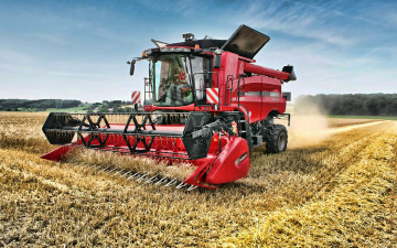 обоя 2019 case ih axial flow 5140, техника, комбайны, пшеница, уборка, урожая, сельское, хозяйство, hdr