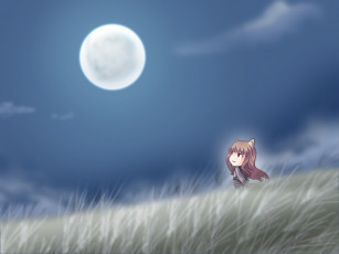Картинка аниме spice and wolf