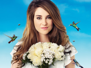 обоя the, secret, life, of, american, teenager, кино, фильмы, shailene, woodley
