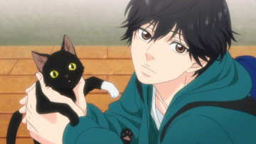 обоя аниме, ao haru ride, ao, haru, ride, mabuchi, ko, screenshot, male, cat