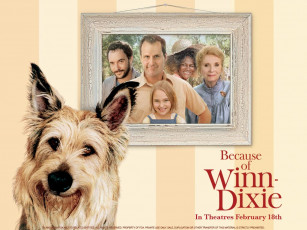 обоя because, of, winn, dixie, кино, фильмы