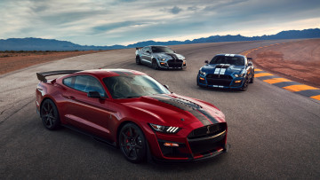 обоя 2020 ford mustang shelby gt500, автомобили, mustang, shelby, ford, купе, форд, трек, gt500, 2020