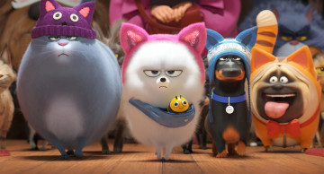 обоя мультфильмы, the secret life of pets 2, the, secret, life, of, pets, 2