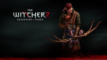 Картинка the witcher assassins of kings видео игры 2